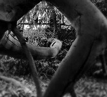 TwistedWays;; by Adara Hughes