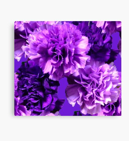 Natural Blooming Flowers - Purple Cattely Orchids Canvas Print