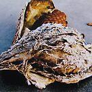 Crushed Milkweed by evon ski