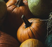 Autumn Harvest by Andrea Hurley