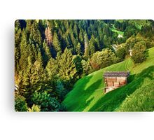 Zillertal Valley Canvas Print