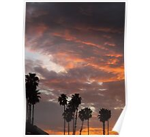 California Palm Sunset Poster