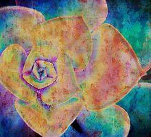 A Colourful Twist  by Betty MacRae