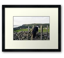 Life in the Old Dog yet Framed Print