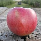 Red Apple by Melissa Delaney