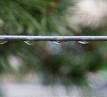 Raindrops by BeatrizGR