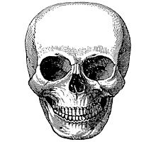 Classic Vintage Skull Photographic Print