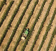 Farming the Fields by josephjames