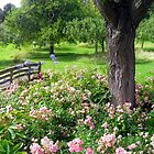 Floral Meadow by Lesliebc