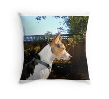 Django the Squirrel Hunter. Throw Pillow