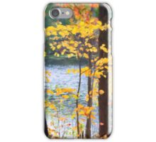 Autumn by the River iPhone Case/Skin