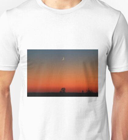 High Bridge Sliver Unisex T-Shirt