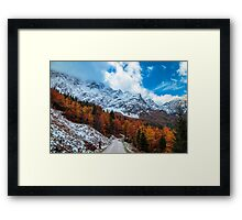 trekking path in an autumn day in the alps Framed Print