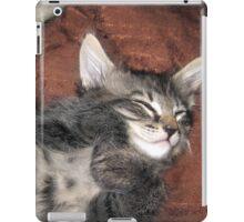 Mikino Sleeping 2 iPad Case/Skin
