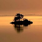 """""""And The Fog Rolls In"""" by Larry Trupp"""