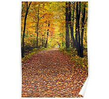 Walk in the Autumn Wood Poster