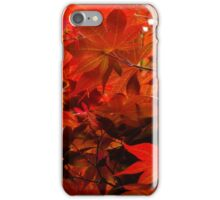 Red Japanese Maple iPhone Case/Skin