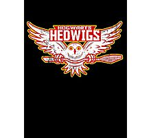 Team Hedwigs Photographic Print