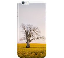 Canola Sunrise - NSW, AUSTRALIA iPhone Case/Skin