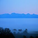 Foggy Valley and the Suisse Alps by Imi Koetz