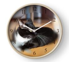 Cat playing with mouse-toy Clock