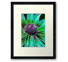 Buzzy Bumble Framed Print