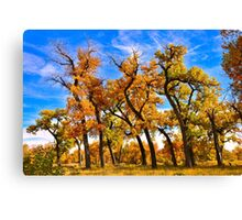 Autumn Dance of the Tall Trees  Canvas Print