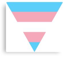 Triangle transgender flag Canvas Print