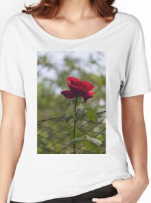 rose in the garden Women's Relaxed Fit T-Shirt