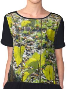 Some autumn green leaves Chiffon Top