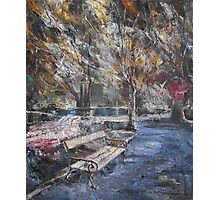 After the Rain Photographic Print