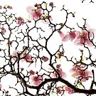 Crackled Magnolias by ShotsOfLove