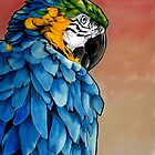 Blue Macaw by secretplanet