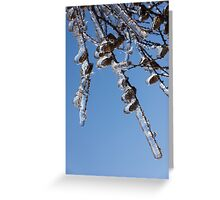 Mother Nature's Christmas Decorations – Sparkling Twigs and Pine Cones Greeting Card