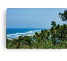 Torrey Pines - the Beach and the Lagoon Through the Trees Canvas Print