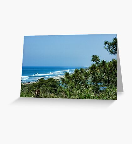 Torrey Pines - the Beach and the Lagoon Through the Trees Greeting Card