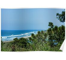Torrey Pines - the Beach and the Lagoon Through the Trees Poster