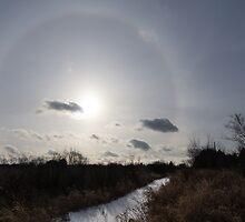 Sun Halo - a Beautiful Optical Phenomenon in the Winter Sky by Georgia Mizuleva