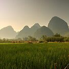 Cycling near Yangshuo by Paul Tait