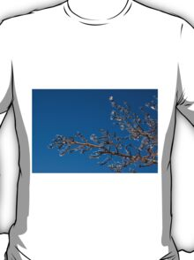 Mother Nature's Christmas Decorations - Shiny Ice Baubles  T-Shirt