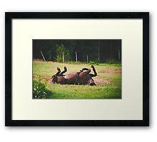 Lovely Creature Framed Print