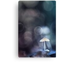 After the Rain... Canvas Print