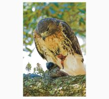 Red Tailed Hawk Kids Clothes