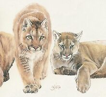 American Cougar by BarbBarcikKeith