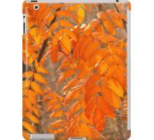 Mountain Ash Leaves in Autumn iPad Case/Skin