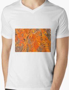 Mountain Ash Leaves in Autumn Mens V-Neck T-Shirt