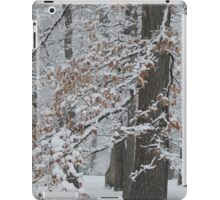 Fallen Snow With Leaves Still Clinging iPad Case/Skin