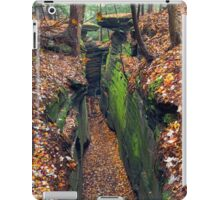Cleft in the Rock iPad Case/Skin