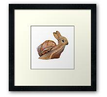 Snabbit Framed Print