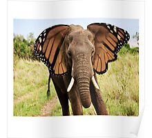 Elephly Poster